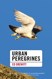 Urban Peregrines ebook by Ed Drewitt