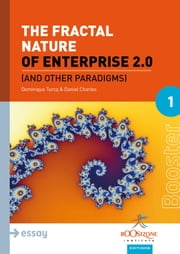 The Fractal Nature of Enterprise 2.0 - And Other Paradigms ebook by Daniel Charles,Dominique Turcq