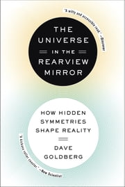 The Universe in the Rearview Mirror - How Hidden Symmetries Shape Reality ebook by Dave Goldberg