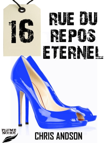 16 RUE DU REPOS ETERNEL ebook by Chris Andson