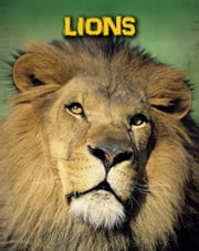 Lions ebook by Claire Throp