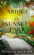 The Bridge in Sunset Park ebook by