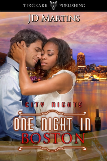 One Night in Boston ebook by JD Martins
