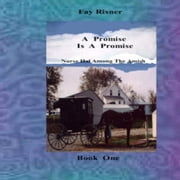 A Promise Is A Promise - Nurse Hal Among The Amish ebook by Fay Risner