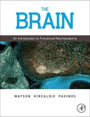 The Brain - An Introduction to Functional Neuroanatomy ebook by Charles Watson,Matthew Kirkcaldie,George Paxinos