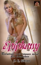 Epiphany ebook by S. C. Gibson