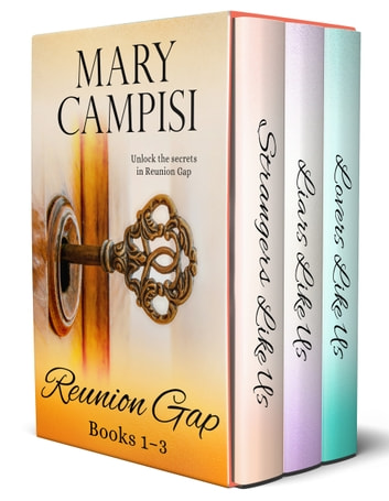 Reunion Gap Boxed Set - Books 1 - 3 ebook by Mary Campisi