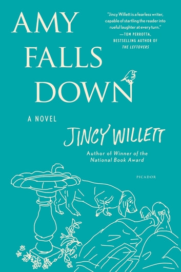 Amy Falls Down - A Novel ebook by Jincy Willett