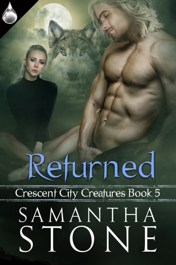 Returned ebook by Samantha Stone