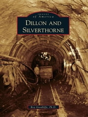 Dillon and Silverthorne ebook by Roy Goodliffe Ph. D.