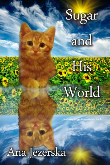 Sugar and His World ebook by Ana Jezerska