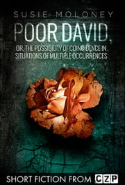 Poor David, or, The Possibility of Coincidence in Situations of Multiple Occurrences ebook by Susie Moloney