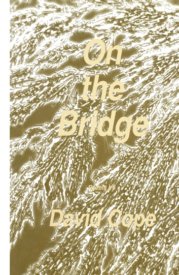 On the Bridge ebook by David Cope