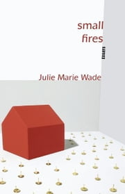 Small Fires - Essays ebook by Julie Marie Wade