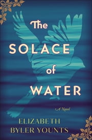The Solace of Water - A Novel ebook by Elizabeth Byler Younts