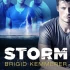 Storm audiobook by Brigid Kemmerer