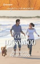 Practicing Parenthood (Mills & Boon Superromance) ebook by Cara Lockwood
