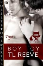 Boy Toy ebook by TL Reeve
