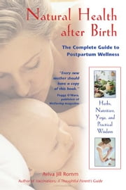 Natural Health after Birth - The Complete Guide to Postpartum Wellness ebook by Aviva Jill Romm