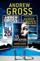 Andrew Gross 3-Book Thriller Collection 2: 15 Seconds, Killing Hour, The Blue Zone ebook by Andrew Gross