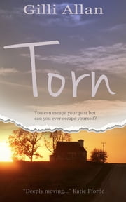 Torn ebook by Gilli Allan