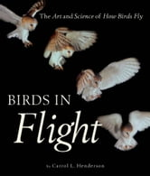 Birds in Flight: The Art and Science of How Birds Fly - The Art and Science of How Birds Fly ebook by Carrol L. Henderson,Steve Adams