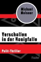 Verschollen in der Honigfalle - Polit-Thriller eBook by Michael Molsner