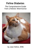 Feline Diabetes: The Comprehensive Guide from a Holistic Veterinarian