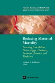 Reducing Maternal Mortality: Learning from Bolivia, China, Egypt, Honduras, Indonesia, Jamaica and Zimbabwe ebook by World Bank