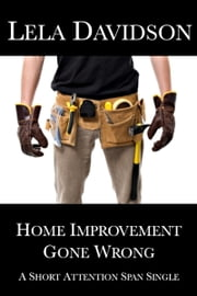 Home Improvement Gone Wrong ebook by Lela Davidson