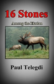 16 Stones ebook by Paul Telegdi