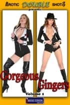 Gorgeous Gingers Vol. 1 - Adult Nude Picture Book ebook by Mithras Imagicron