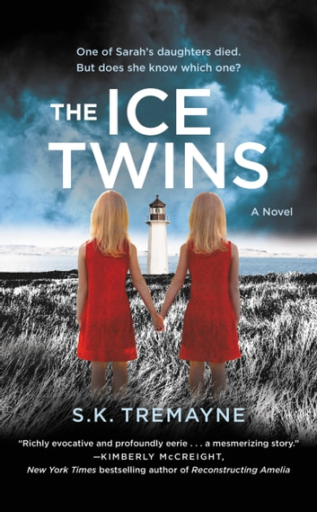 The Ice Twins - A Novel ebook by S.K. Tremayne