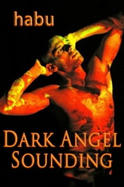 Dark Angel Sounding - A Gay Erotica BDSM ebook by habu