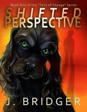 Shifted Perspective ebook by Jay Bridger