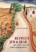 Between Jew and Arab - The Lost Voice of Simon Rawidowicz ebook by David N. Myers
