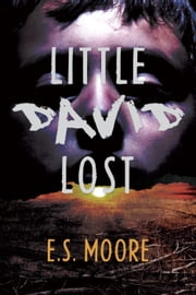 Little David Lost ebook by E.S. Moore