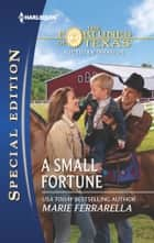 A Small Fortune - A Single Dad Romance eBook by Marie Ferrarella