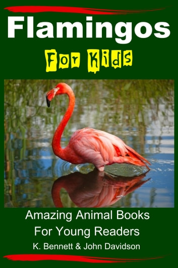 Flamingos For Kids: Amazing Animal Books For Young Readers ebook by K. Bennett,John Davidson