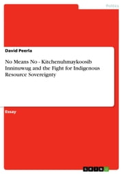 No Means No - Kitchenuhmaykoosib Inninuwug and the Fight for Indigenous Resource Sovereignty ebook by David Peerla