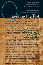 Queering the Text: Biblical, Medieval and Modern Jewish Stories ebook by Andrew Ramer