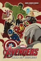 Phase Two: Marvel's Avengers: Age of Ultron ebook by Alex Irvine