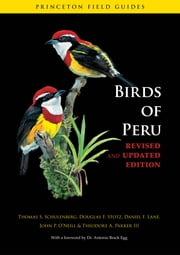 Birds of Peru - Revised and Updated Edition ebook by Thomas S. Schulenberg,Douglas F. Stotz,Daniel F. Lane,John P. O'Neill,Theodore A. Parker III,Dr. Antonio Brack Egg