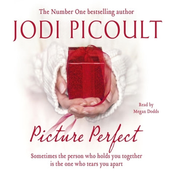 Picture Perfect audiobook by Jodi Picoult