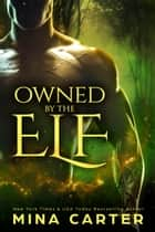 Owned by the Elf ebook by Mina Carter