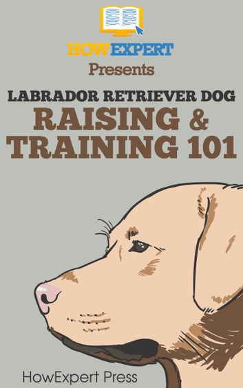 Labrador Retriever Dog Raising & Training 101 ebook by HowExpert