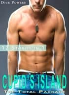 Cupid's Island: The Total Package '12 Stories in 1' (Gay Erotica) ebook by Dick Powers