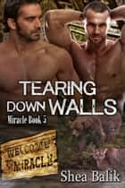 Tearing Down Walls Miracle Book 5 ebook by Shea Balik