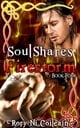 Firestorm - Book Four of the SoulShares Series ebook by Rory Ni Coileain