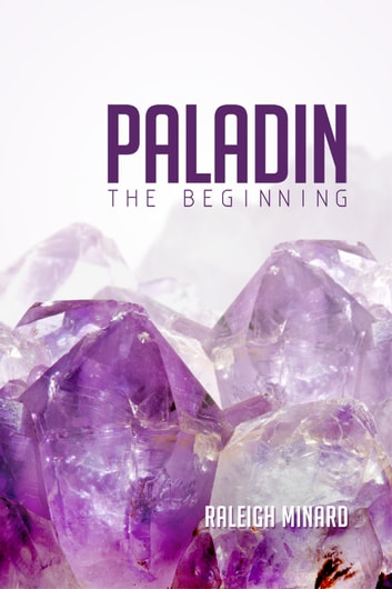 Paladin - The Beginning ebook by Raleigh Minard